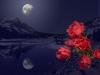 08-383-moonlight-and-rosesjim-reeves