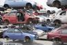 18-automobiles-for-transplant