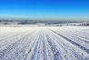04-snowcoveredfield
