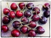 cherry-ripe-5dfc90d7a5ad0894ffecb1830588ff0ee9b29072