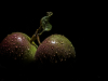 apples-f395cbc995556683a4c99b34b72f061b7e5be005