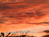 sunset-over-sandal-1ac26bb8246e9775a171639d9e3f853c3b6879d9