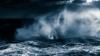 Digital - Highly Commended - Wandering Albatross - David Jones