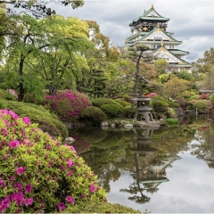 3rd - View to Osaka Castle - Peter Wells
