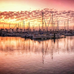 Marina at Sunset - Michelle Howell