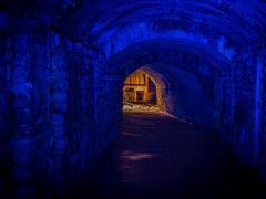 Into the Blue - Ian Waddington