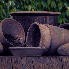 Potting Out by Ian Waddington