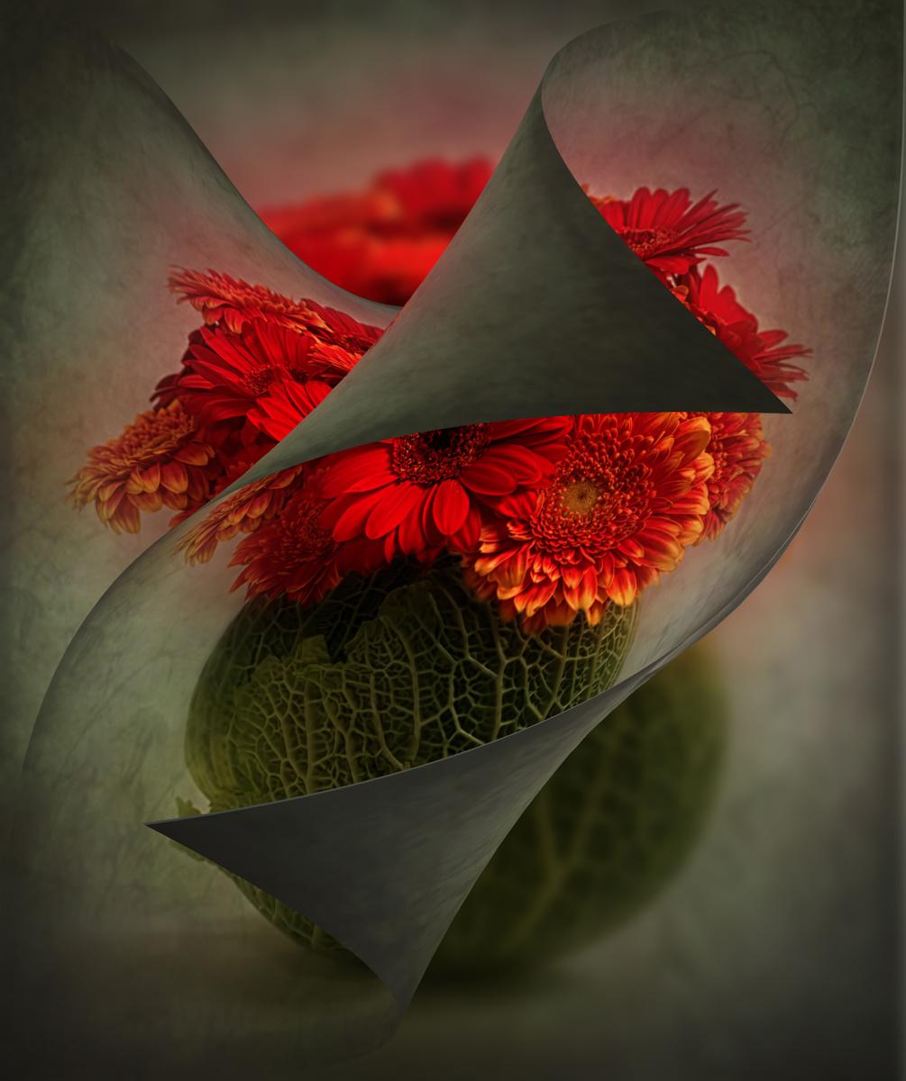 Its-A-Wrap_by_Sally-Sallett