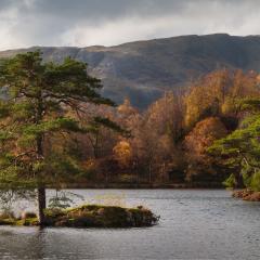 Autumnal Tarn Hows - Steven Hows
