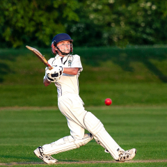 Young-Cricketeer_by_Patrick-Maloney