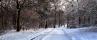 28-winter-yvonne-2nd